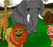 Hra - ZOO Coloring