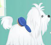 Hra - Cutie Pet Care