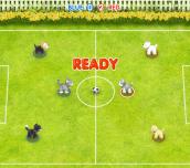 Hra - Pet Soccer