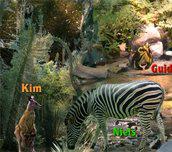 Hra - Zoo Breakout
