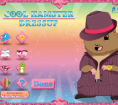 Hra - Cool Hamster Dressup