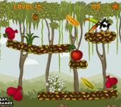 Hra - ToucanintheJungle