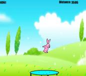 Hra - JumpingBunny