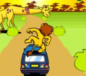 Hra - SafariParkApeldoorn