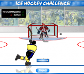 Hra - Ice Hockey Challenge!