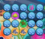 Hra - Sea Life Memo