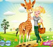Hra - AnimalPal