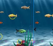 Hra - FishingDifference
