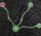 Hra - TentacleWars