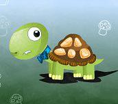 Hra - Želví cesta