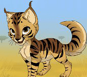 Hra - Kitten Maker