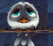 Hra - Birdies
