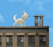 Hra - Pes Bolt