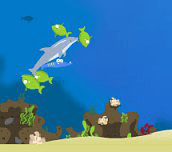 Hra - Dolphin Olympics 2