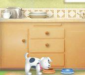 Hra - Domácí mazlíčci