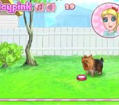Hra - CuteYorkie
