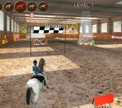 Hra - Horse Jumping 3D