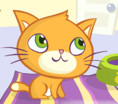 Hra - Kitty Slacking