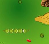 Hra - FruitSnake