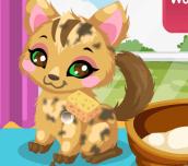 Hra - KittyCare2