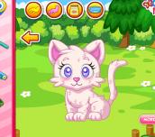 Hra - Pet Stars: Dazzling Kitty