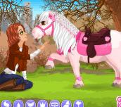 Hra - Emily's Diary Rescued Pony