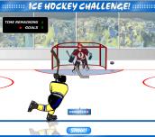 Hra - Ice Hockey Challenge!