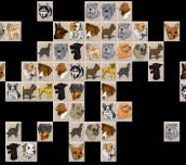 Hra - Dog Mahjong