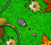 Hra - HungryHedgehog