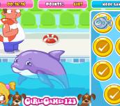 Hra - DolphinSlacking
