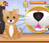 Hra - KittyGroomingSalon