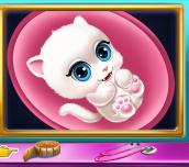 Hra - KittyPregnantCheckup